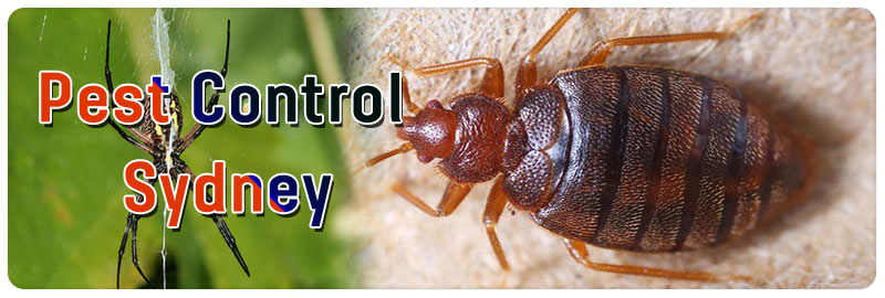 Pest Control Thirlmere