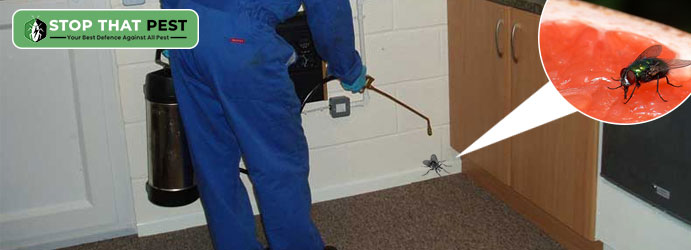 Best Pest Control Faraday