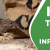 How To Stop Rat Infestation.
