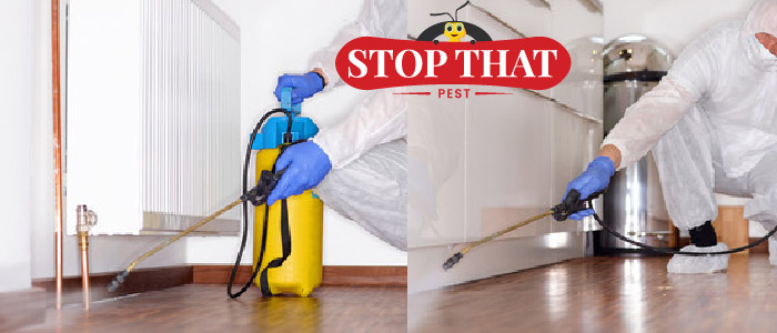 Commercial Buildings Need Pest Control