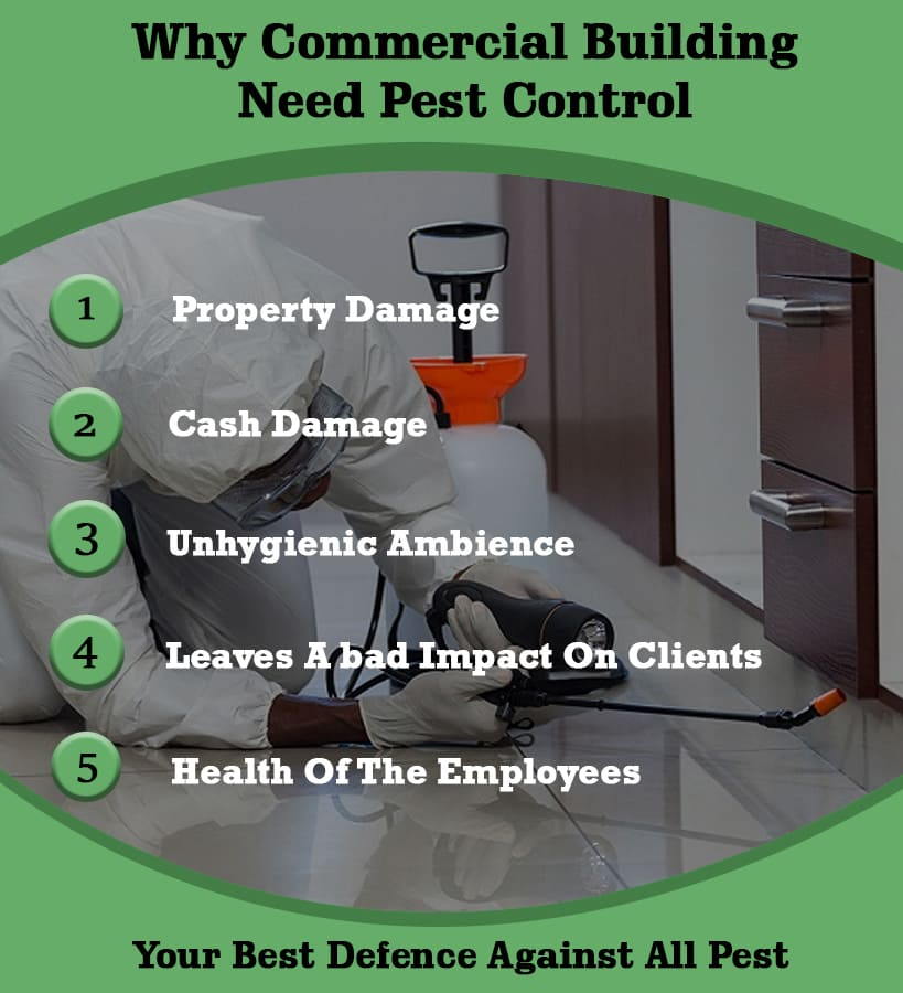 WHY WOULD COMMERCIAL BUILDINGS NEED PEST CONTROL?